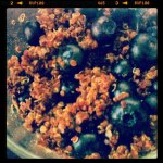 Vegan Blueberry Quinoa Bowl
