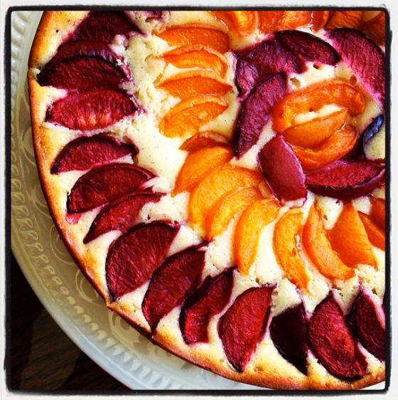 Plum Nectarine Yogurt Cake